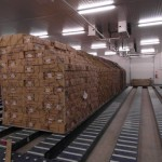 Cold Storages for Perishable Cargo